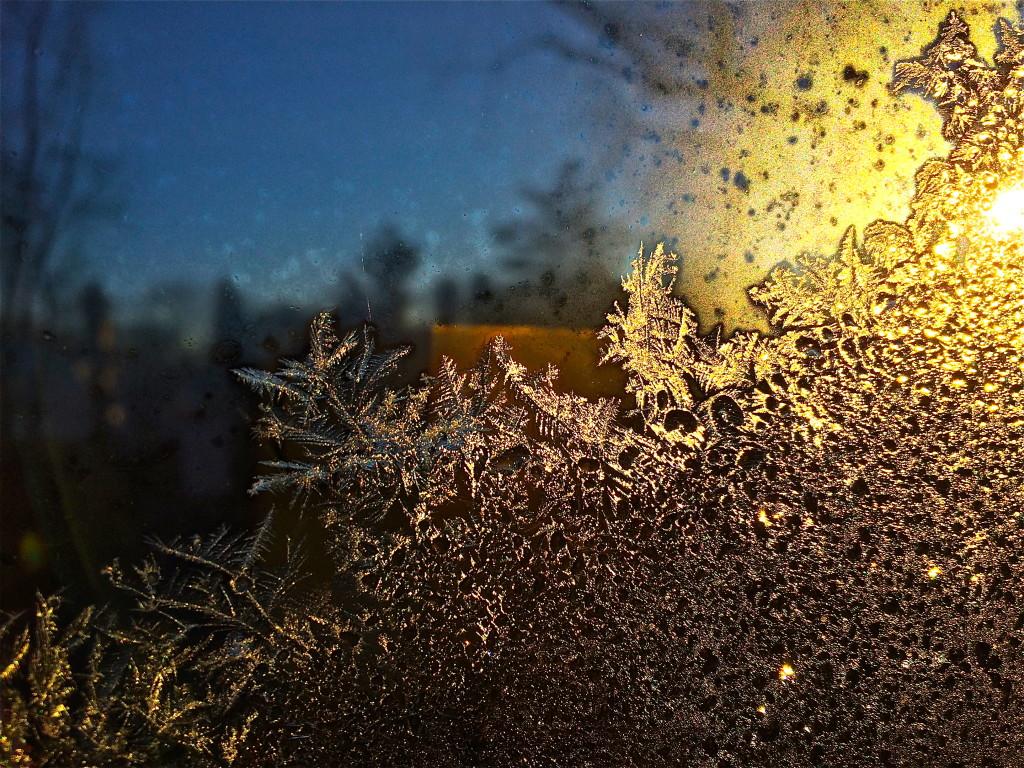 winter frost window